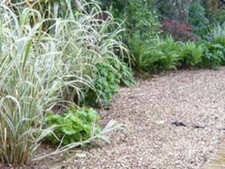 highbury garden
