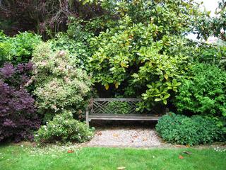 muswell hill garden